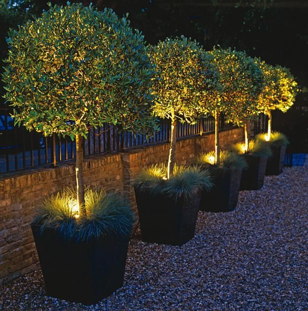 Garden Lighting Ideas from Garden Lighting London, Es on garden gifts ideas, outdoor party lights, bathroom ideas, garden placement ideas, diy garden ideas, floor lamps ideas, garden front yard landscaping ideas, retaining walls ideas, outdoor candle lantern, solar powered garden lights, winter vegetable garden ideas, garden roofing ideas, garden labeling ideas, kitchens ideas, deck lighting tips, small garden ideas, garden design ideas, garden garden ideas, decorative string lights, outdoor rope lights, garden color ideas, garden sinks ideas, outdoor christmas lights, walkway lighting, garden bath ideas, outdoor lighting ideas, garden lights, deck lighting, outdoor accent lighting, landscape design ideas, gardening ideas,
