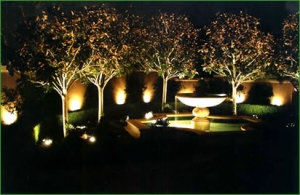 Combination of spike and recessed lights 300x195 - Garden Lighting Gallery