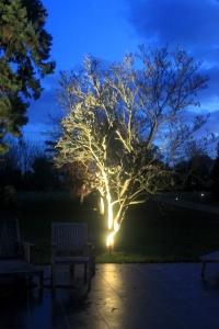 new2 200x300 - Garden Lighting Gallery